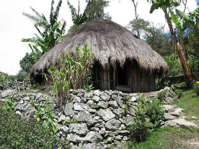 papua indonesiana